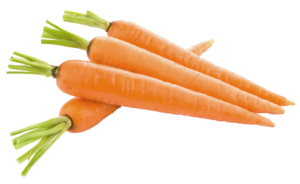 carrot_PNG49851